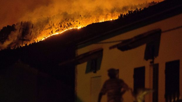 Portugal Forest Fires Kill More Than 60 People