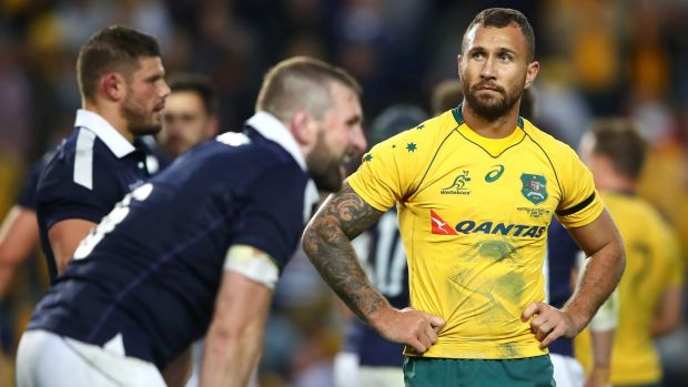 Beale softens the Hunt Bledisloe blow
