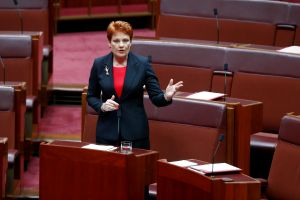 Out on a limb: Senator Pauline Hanson debating in the Senate.