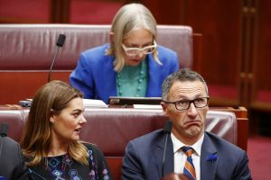 Disunity: Greens senators Sarah Hanson-Young, Lee Rhiannon (back) and Richard Di Natale in the Senate last week.