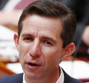 "Education Minister Simon Birmingham agreed to an extra $50 million in ""transitional assistance"" for the first year."