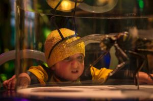 Ravi enjoying one of the exhibits during the preview of the Australian premiere of Bug Lab: Little Bugs, Super Powers ? ...
