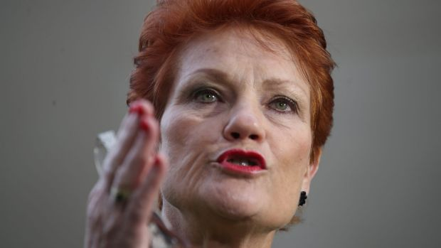"""One Nation leader Pauline Hanson says she's """"had to pick up the pieces from an organisation that was run incompetently ..."""