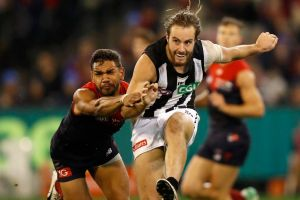 On the right track: After years of being hampered by illness and injury Magpie Tim Broomhead is finally putting a run of ...