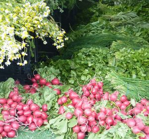 Fresh produce on offer at various Farmer's Markets