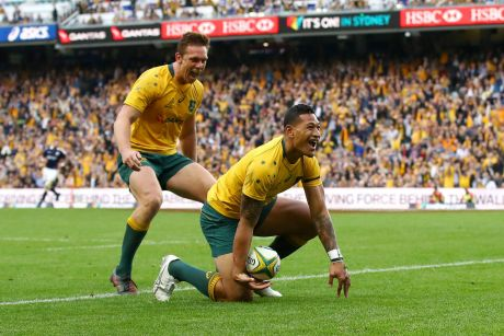 Hungry: Israel Folau will look to lead the Wallabies back to winning form after their loss to Scotland last week.