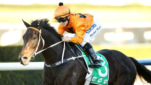 Under the radar: Sound Proposition ready to cause a shock in Saturday's Epsom Handicap at Randwick.