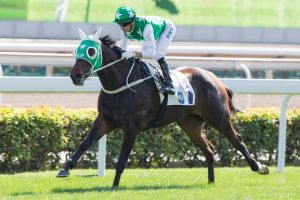 On the gallop: Jockey Joao Moreira riding Pakistan Star in 2016.