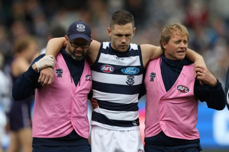 Dazed: Geelong captain Joel Selwood is helped from the field by trainers.