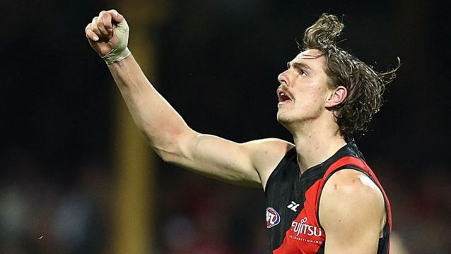 Kicking on: Joe Daniher