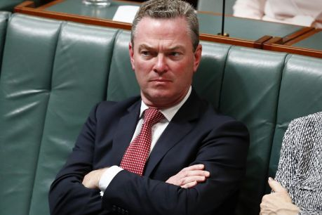 "Christopher Pyne has apologised unreservedly for his ""ill chosen and unwise "" speech to a party function last week"