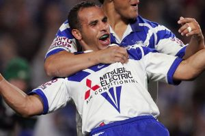 Hazem El Masri scored 342 points for the Bulldogs in 2004.