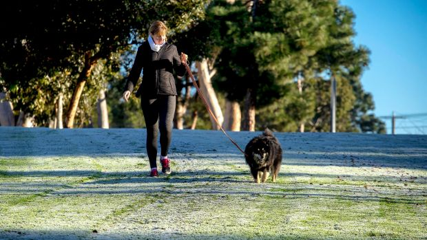 A woman walks her dog in Keilor during the weekend chill.
