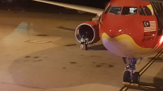 AirAsia flight grounded by birdstrike