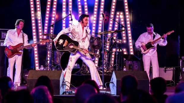 One of the many Elvis tribute acts in full swing.