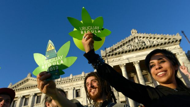Activists gather in front of Uruguayan Congress in support of the legalisation of marijuana in 2013.