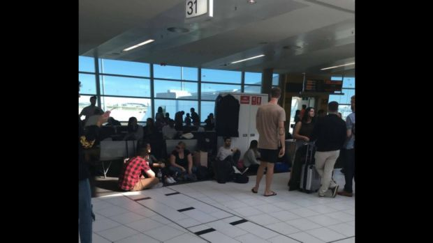 Fog causes chaos at Brisbane airport