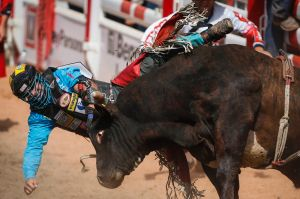 Mike Lee, of Fort Worth, Texas, is bucked off Little Dipper during bull riding at the Calgary Stampede in Calgary, ...
