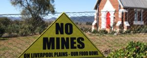 On a wing and a prayer: time to review how big mining projects get the government's blessing.
