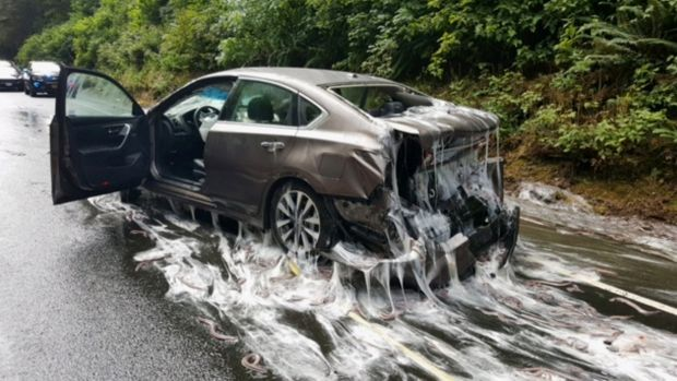 One of the vehicles caught in the slime after the eel-carrying truck lost its load.