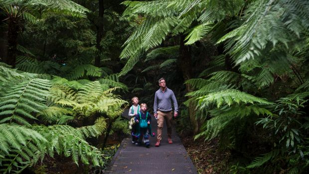 (From Left) Harley Bell 8 Pascal Bell 6 and Peter Bell on the Dinosaur trail at the Australian Nation Botanic Gardens. ...