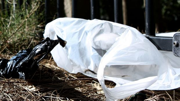 Good riddance: The disposable  single-use plastic bag could vanish if government legislated against their use in all stores.