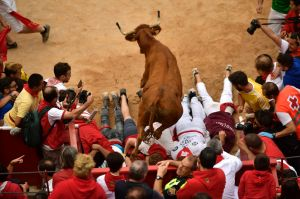 A cow jumps over men laid on the ground following the running of the bulls at the San Fermin Festival, in Pamplona, ...