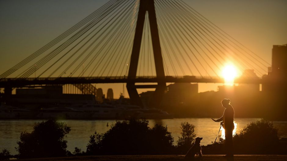 A woman trains a dog in Bicentennial Park at Rozelle Bay as the sun rises over Sydney.