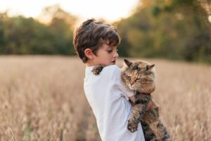 A young boy holding his cat in a field EMBARGOED FOR SUNDAY LIFE, JULY 23/17 ISSUE. cr: Stocksy (supplied image, no ...