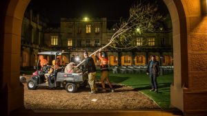 Sydney University Grounds Manager Mark Moeller and ground staff with a jacaranda tree which was successfully cloned from ...