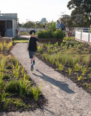 The rooftop garden at 38 Westbury Street, St Kilda East created green space from a heat-attracting no-go zone.