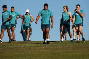 Knackered: Wallabies players during a hills training session in Sydney.