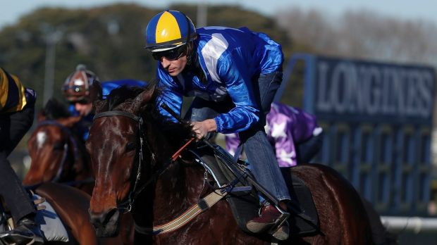 No rivals?: Winx and Hugh Bowman.