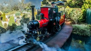 Cockington Green Gardens is advertising for a new steam train driver.
