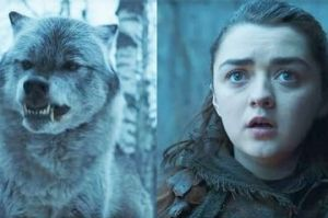 Nymeria and Arya Stark
