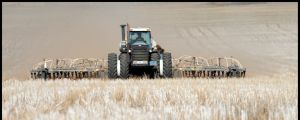 Aaron Sanderson a farmer near St Arnaud is busy seeding this year's crops of wheat, barley and canola Thursday 10 May ...