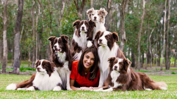 Dr Katrina Warren with The Wonderdogs, a team of border collies that educate and entertain.