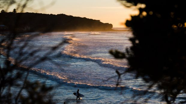 More beach-welcoming weather on the way for Sydney.
