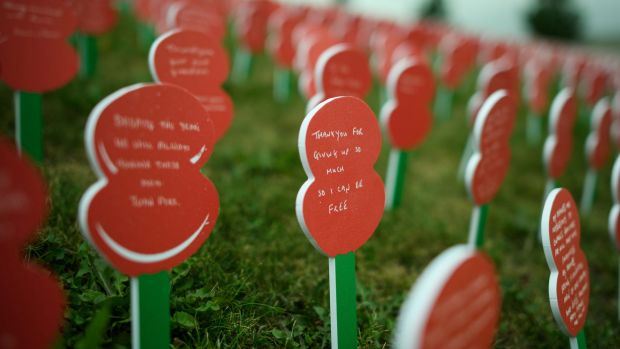 Poppies – each with a personalised message from a member of the British public – are currently on display at Tyne Cot ...
