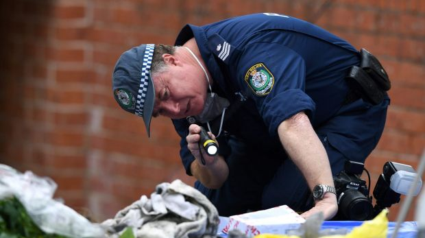 Accused sydney terrorist tried to send brother to his - Dive jump reporting system ...