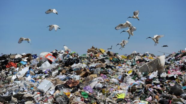 A border operation will begin to crack down on interstate movement of rubbish.