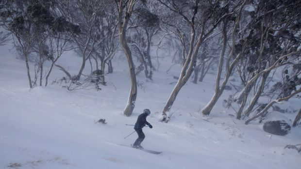 Thredbo's looking good for now but the longer term outlook is less appealing.