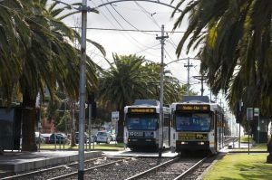 Trams on Mount Alexander Road near Ascot Vale.