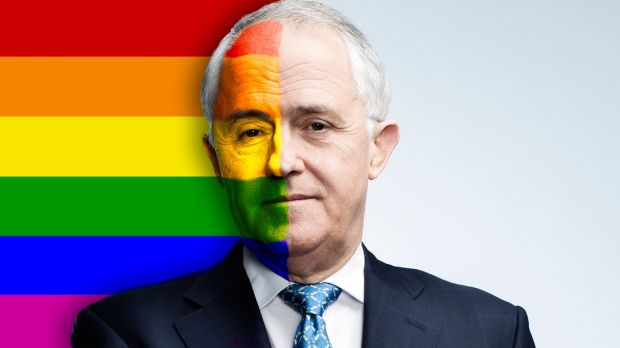 Gay Marriage Articles Australia