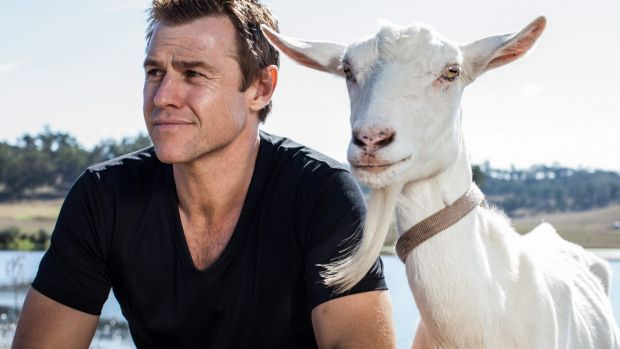 Rodger Corser plays a flawed genius with a taste for debauchery in <i>Doctor Doctor</I>.
