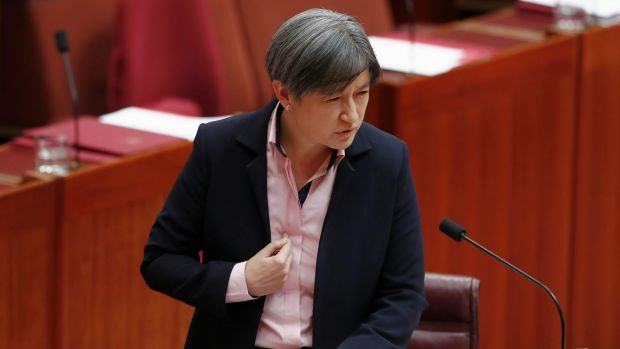 Openly gay Labor frontbencher Penny Wong attacks the plebiscite plan in the Senate.