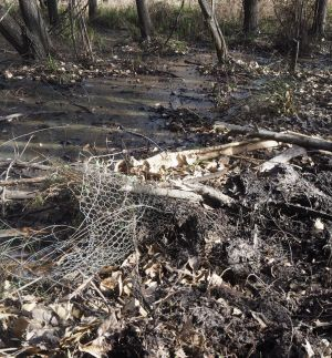 Damage caused to fencing by a fire trial being pushed through swampy land behind houses at Majors Creek, as photographed ...