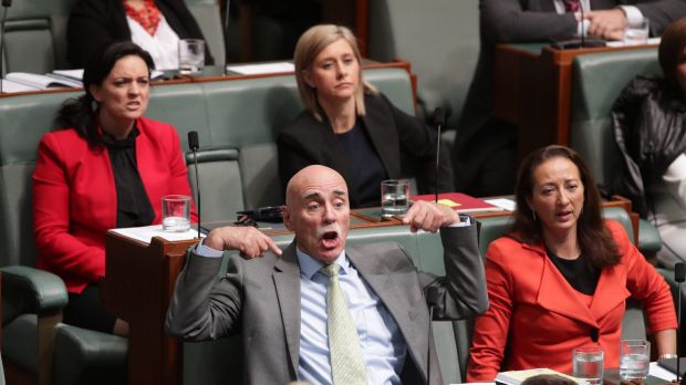 Labor MPs Warren Snowdon and Gai Brodtmann during question time on Thursday.