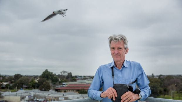 Seagull expert Ian Temby says says the root cause of the problem is not being addressed.