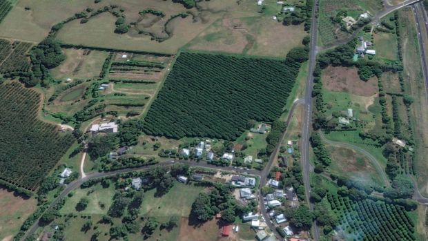 Google Maps view showing the macadamia farm bought by interests linked to John Ibrahim on the edge of Newrybar.